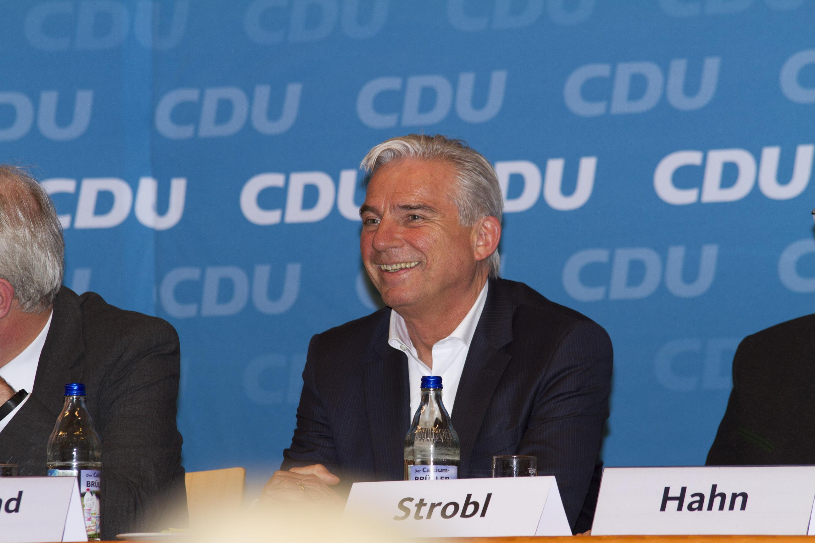 Kreisparteitag in Widdern